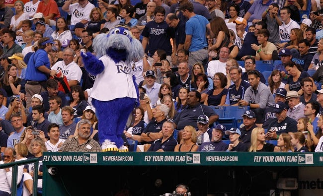 Aug 17, 2013; St. Petersburg, FL, USA; Tampa Bay Rays mascot Raymond stands on the dugout against the Toronto Blue Jays at Tropicana Field. Toronto Blue Jays defeated the Tampa Bay Rays 6-2. Mandatory Credit: Kim Klement-USA TODAY Sports