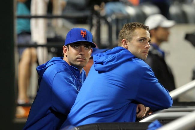 Aug 26, 2013; New York, NY, USA; New York Mets injured starting pitcher Matt Harvey (33) and injured third baseman David Wright (5) look on from the dugout during the eighth inning of a game against the Philadelphia Phillies at Citi Field. The Phillies defeated the Mets 2-1. Mandatory Credit: Brad Penner-USA TODAY Sports