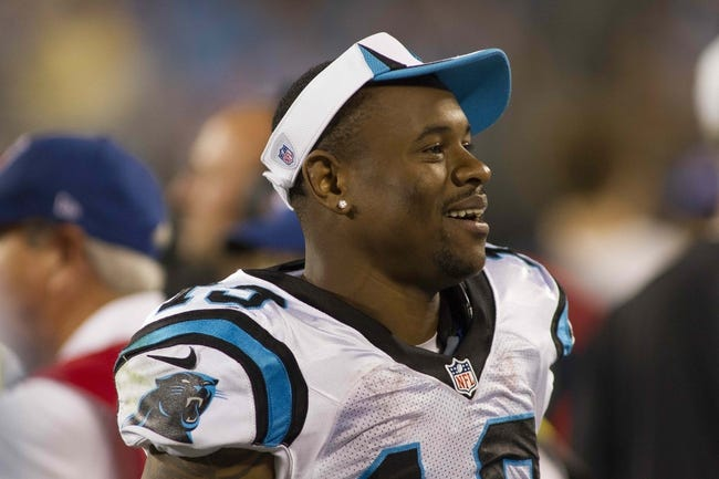 Aug 29, 2013; Charlotte, NC, USA; Carolina Panthers wide receiver Ted Ginn (19) stands on the sidelines during the fourth quarter during the game against the Pittsburgh Steelers at Bank of America Stadium. The Panthers defeated the Steelers 25-10. Mandatory Credit: Jeremy Brevard-USA TODAY Sports