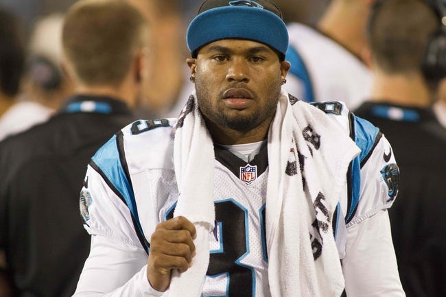 Aug 29, 2013; Charlotte, NC, USA; Carolina Panthers wide receiver Steve Smith (89) stands on the sidelines during the fourth quarter against the Pittsburgh Steelers at Bank of America Stadium. The Panthers defeated the Steelers 25-10. Mandatory Credit: Jeremy Brevard-USA TODAY Sports
