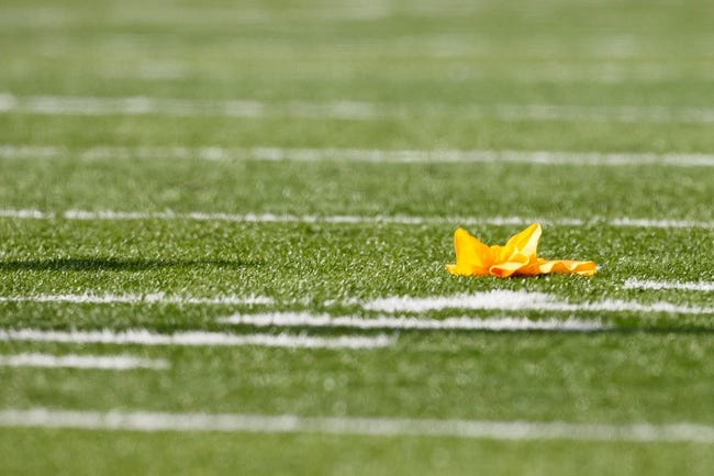 Aug 31, 2013; Ann Arbor, MI, USA; Penalty flag on the field during the game between the Michigan Wolverines and the Central Michigan Chippewas at Michigan Stadium. Mandatory Credit: Rick Osentoski-USA TODAY Sports