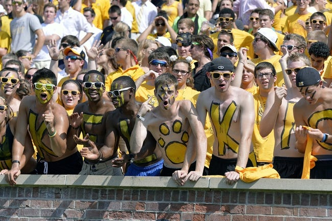 Sep 7, 2013; Columbia, MO, USA;  Missouri Tigers fans cheer during the first half against the Toledo Rockets at Faurot Field. Mandatory Credit: Jasen Vinlove-USA TODAY Sports
