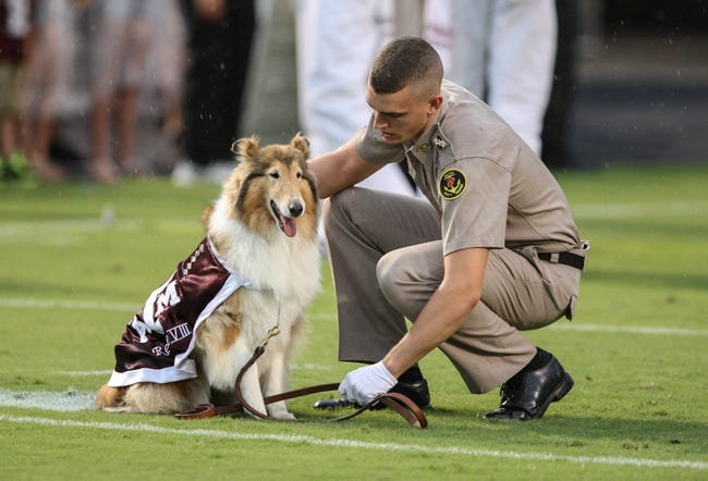 Sep 7, 2013; College Station, TX, USA; Texas A&M Aggies mascot Reveille VIII is led onto the field before a game against the Sam Houston State Bearkats at Kyle Field. Mandatory Credit: Troy Taormina-USA TODAY Sports