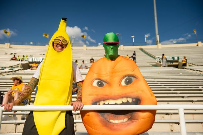 Sep 7, 2013; Waco, TX, USA; Two Baylor Bears fans in costume during the game between the Bears and the Buffalo Bulls at Floyd Casey Stadium. The Bears defeated the Bulls 70-13. Mandatory Credit: Jerome Miron-USA TODAY Sports