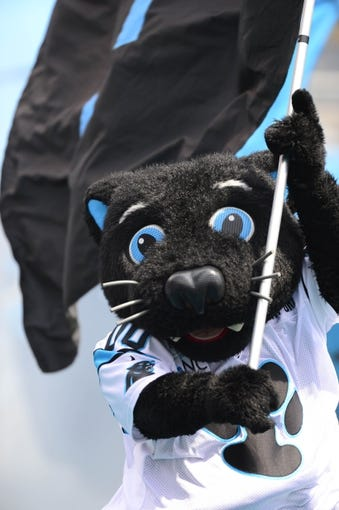 Sep 8, 2013; Charlotte, NC, USA; Carolina Panthers mascot Sir Purr comes on to the field before the game at Bank of America Stadium. Mandatory Credit: Bob Donnan-USA TODAY Sports