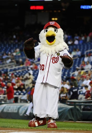 Sep 20, 2013; Washington, DC, USA; Washington Nationals mascot Screech on the field before the game against the Miami Marlins at Nationals Park. Mandatory Credit: Brad Mills-USA TODAY Sports