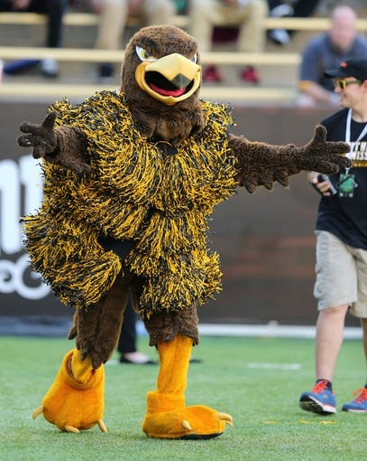 Oct 5, 2013; Hattiesburg, MS, USA; The Southern Miss Golden Eagles mascot performs during the second half of their game against the FIU Golden Panthers at M.M. Roberts Stadium. FIU won 24-23. Mandatory Credit: Chuck Cook-USA TODAY Sports