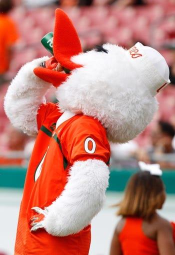 Sep 28, 2013; Tampa, FL, USA; Miami Hurricanes mascot Sebastian the Ibis drinks gatorade during the second half against the South Florida Bulls at Raymond James Stadium. Miami Hurricanes defeated the South Florida Bulls 49-21. Mandatory Credit: Kim Klement-USA TODAY Sports