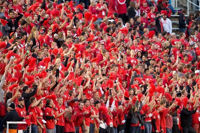 Oct 12, 2013; Salt Lake City, UT, USA; Utah Utes fans cheer during the second half against the Stanford Cardinal at Rice-Eccles Stadium. Utah defeated Stanford 27-21. Mandatory Credit: Russ Isabella-USA TODAY Sports