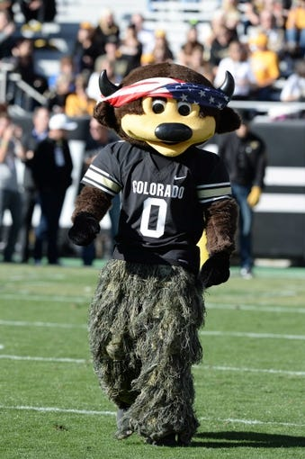 Oct 5, 2013; Boulder, CO, USA; Colorado Buffaloes mascot Chip before the game against the Oregon Ducks at Folsom Field. Mandatory Credit: Ron Chenoy-USA TODAY Sports