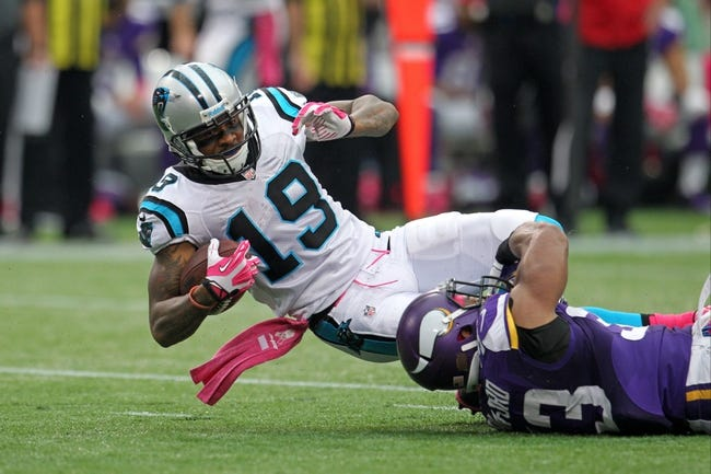 Oct 13, 2013; Minneapolis, MN, USA; Carolina Panthers wide receiver Ted Ginn (19) against the Minnesota Vikings at Mall of America Field at H.H.H. Metrodome. The Panthers defeated the Vikings 35-10. Mandatory Credit: Brace Hemmelgarn-USA TODAY Sports