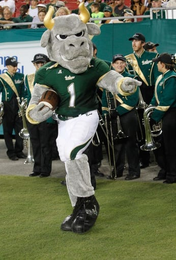 Oct 5, 2013; Tampa, FL, USA; South Florida Bulls mascot, Rocky, poses during the second quarter against the Cincinnati Bearcats at Raymond James Stadium. Mandatory Credit: Kim Klement-USA TODAY Sports