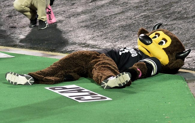 Oct 26, 2013; Boulder, CO, USA; Colorado Buffaloes mascot Chip lays on the ground in the fourth quarter against the Arizona Wildcats at Folsom Field. The Wildcats won 44-20. Mandatory Credit: Ron Chenoy-USA TODAY Sports