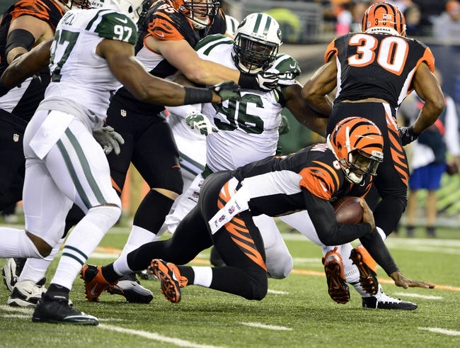Oct 27, 2013; Cincinnati, OH, USA; Cincinnati Bengals quarterback Josh Johnson (8) attempts to run the ball during the second half of the game at Paul Brown Stadium. Mandatory Credit: Marc Lebryk-USA TODAY Sports