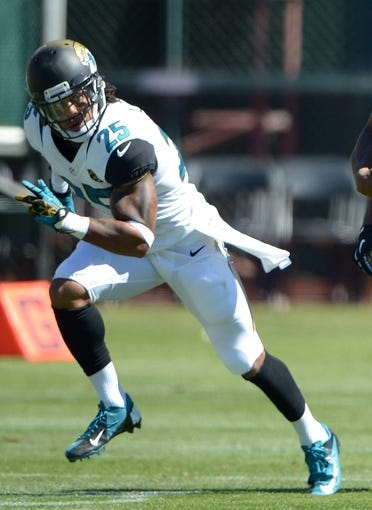 Sep 15, 2013; Oakland, CA, USA; Jacksonville Jaguars defensive back Dwight Lowery (25) during the game against the Oakland Raiders at O.co Coliseum. Mandatory Credit: Kirby Lee-USA TODAY Sports