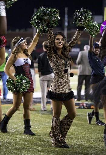 Oct 31, 2013; Denton, TX, USA; The North Texas Mean Green dancers perform in costumes during the second half of the game between the Mean Green and the Rice Owls  at Apogee Stadium. The Mean Green defeated the Owls 28-16. Mandatory Credit: Jerome Miron-USA TODAY Sports