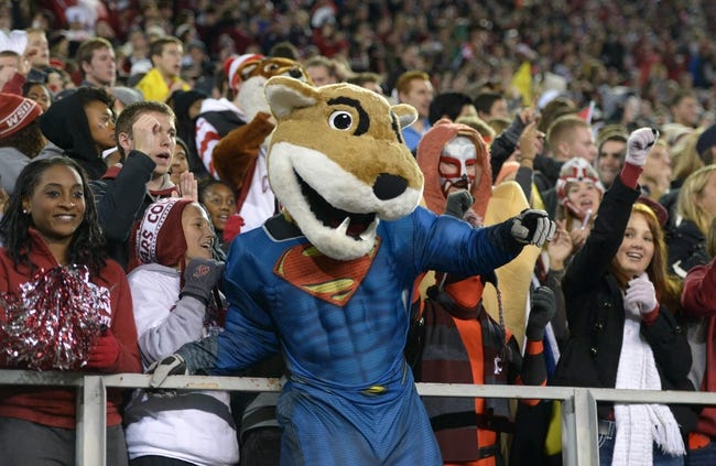 Oct 31, 2013; Pullman, WA, USA; Washington State Cougars mascot Butch wears a Superman costume during the game against the Arizona State Sun Devils at Martin Stadium. Mandatory Credit: Kirby Lee-USA TODAY Sports