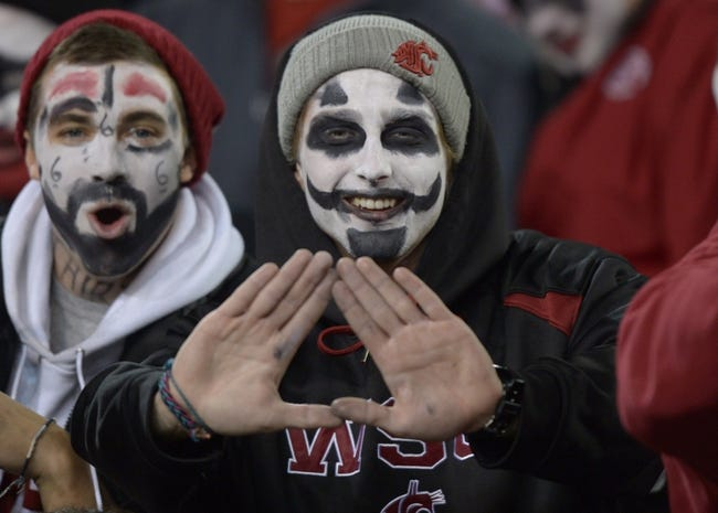 Oct 31, 2013; Pullman, WA, USA; Washington State Cougars fans wearing Halloween costumes react during the game against the Arizona State Sun Devils at Martin Stadium. Mandatory Credit: Kirby Lee-USA TODAY Sports
