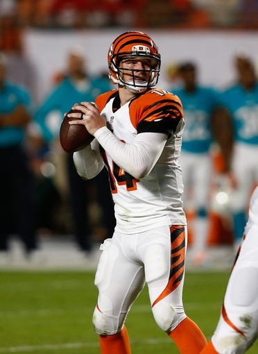 Oct 31, 2013; Miami Gardens, FL, USA;  Cincinnati Bengals quarterback Andy Dalton (14) drops back to pass in the first quarter against the Miami Dolphins at Sun Life Stadium. Mandatory Credit: Robert Mayer-USA TODAY Sports