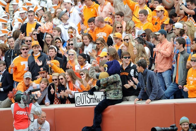 Nov 9, 2013; Knoxville, TN, USA; Tennessee Volunteers fans cheer against the Auburn Tigers during the first half at Neyland Stadium. Mandatory Credit: Randy Sartin-USA TODAY Sports