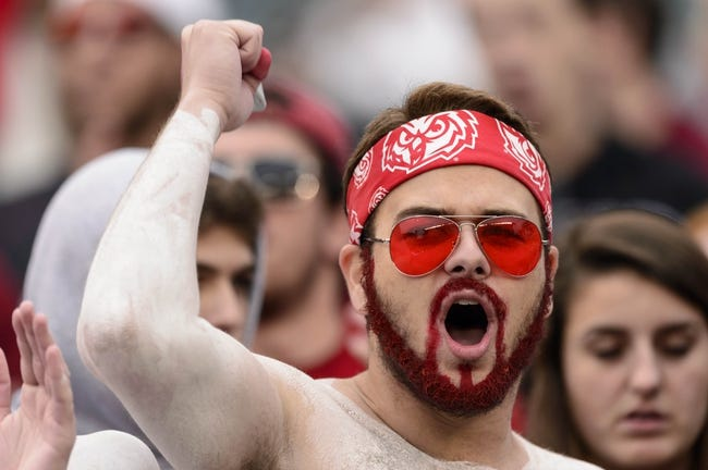 Nov 16, 2013; Philadelphia, PA, USA; Temple Owls fans cheer during the third quarter against the UCF Knights at Lincoln Financial Field. UCF defeated Temple 39-36. Mandatory Credit: Howard Smith-USA TODAY Sports