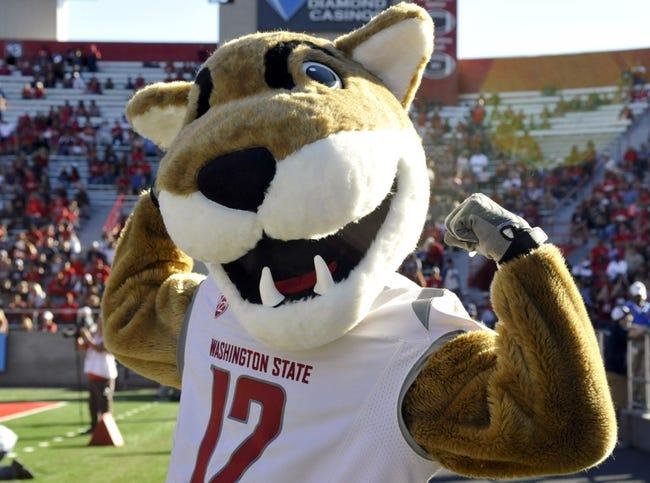 Nov 16, 2013; Tucson, AZ, USA; Washington State Cougars mascot Butch celebrates during the fourth quarter against the Arizona Wildcats at Arizona Stadium. The Cougars beat the Wildcats 24-17. Mandatory Credit: Casey Sapio-USA TODAY Sports