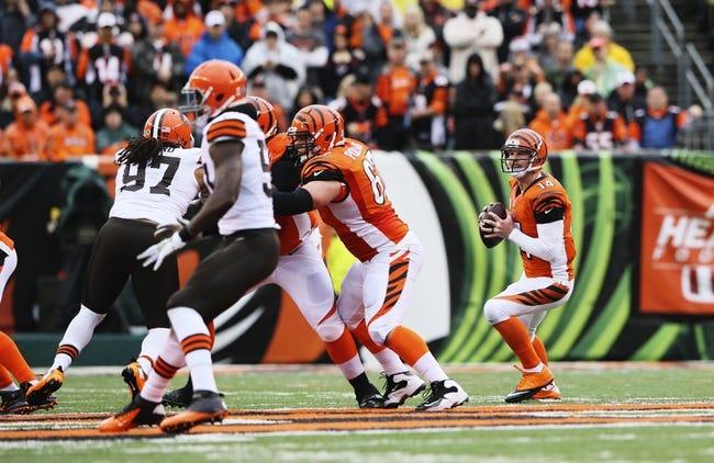 Nov 17, 2013; Cincinnati, OH, USA; Cincinnati Bengals quarterback Andy Dalton (14) drops back to pass during the game against the Cleveland Browns at Paul Brown Stadium. Cincinnati won 41-20.  Mandatory Credit: Kevin Jairaj-USA TODAY Sports