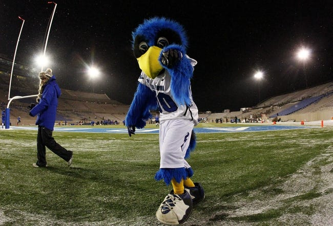 Nov 21, 2013; Colorado Springs, CO, USA; Air Force Falcons mascot 'The Bird' before the start of the game against the UNLV Rebels at Falcon Stadium. Mandatory Credit: Isaiah J. Downing-USA TODAY Sports