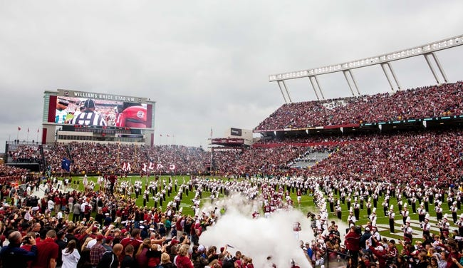 Nov 23, 2013; Columbia, SC, USA; The South Carolina Gamecocks take the field before their game against the Coastal Carolina Chanticleers at Williams-Brice Stadium. Mandatory Credit: Jeff Blake-USA TODAY