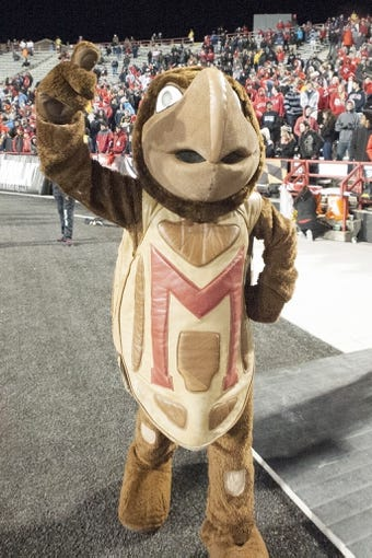 Nov 23, 2013; College Park, MD, USA;  Maryland Terrapins mascot cheers during the second of the game against the Boston College Eagles  at Byrd Stadium. Boston College Eagles defeated Maryland Terrapins 29-26. Mandatory Credit: Tommy Gilligan-USA TODAY Sports