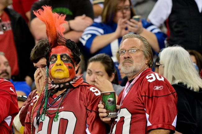 Nov 24, 2013; Phoenix, AZ, USA; Arizona Cardinals fans look on during the second half against the Indianapolis Colts at University of Phoenix Stadium. Mandatory Credit: Matt Kartozian-USA TODAY Sports