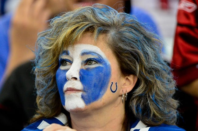 Nov 24, 2013; Phoenix, AZ, USA; An Indianapolis Colts fan looks on during the first half against the Arizona Cardinals at University of Phoenix Stadium. Mandatory Credit: Matt Kartozian-USA TODAY Sports