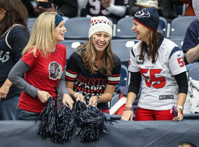 Nov 24, 2013; Houston, TX, USA; Houston Texans fans cheer before a game against the Jacksonville Jaguars at Reliant Stadium. Mandatory Credit: Troy Taormina-USA TODAY Sports