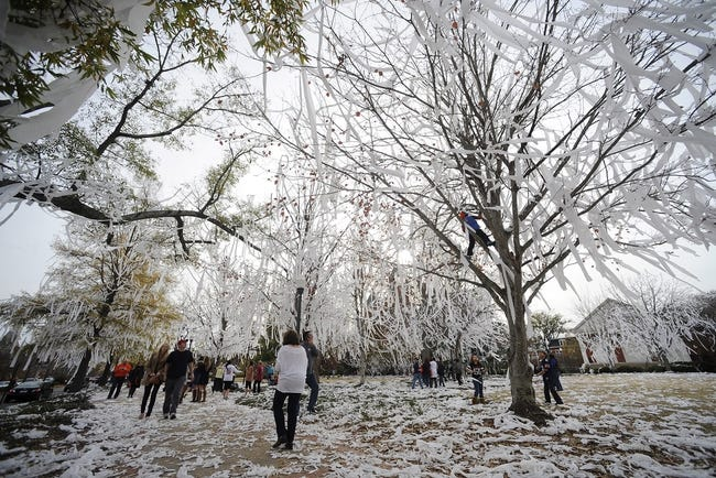 Dec 1, 2013; Auburn, AL, USA; Auburn Tigers fans walk among the rolled trees near Toomer's Corner the day after the game between the Auburn Tigers and the Alabama Crimson Tide at Jordan Hare Stadium. The Tigers defeated the Crimson Tide 34-28. Mandatory Credit: Shanna Lockwood-USA TODAY Sports