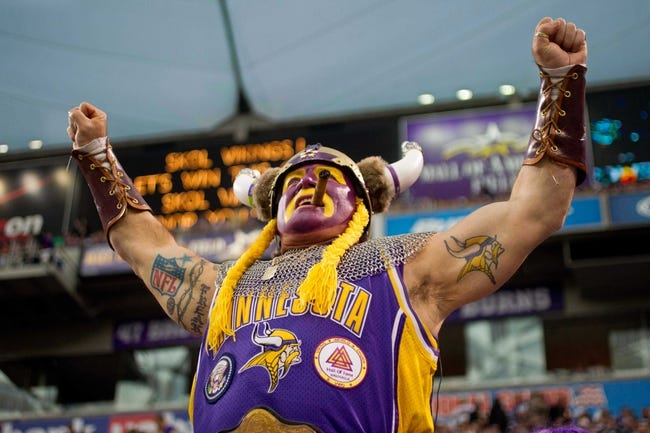 Dec 15, 2013; Minneapolis, MN, USA; Minnesota Vikings fan Syd Davy cheers on his team as they play the Philadelphia Eagles at Mall of America Field at H.H.H. Metrodome. The Vikings win 48-30. Mandatory Credit: Bruce Kluckhohn-USA TODAY Sports