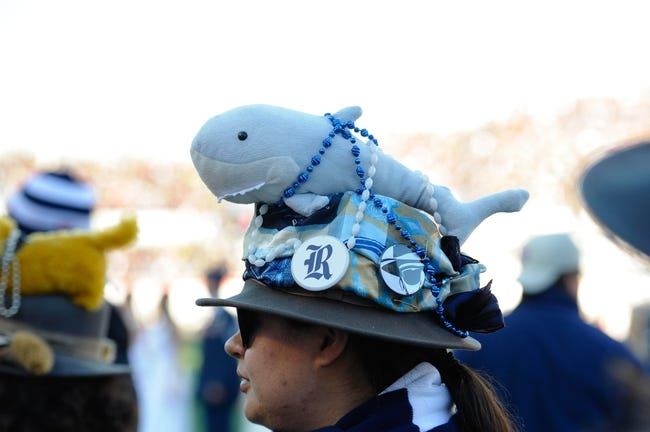 Dec 31, 2013; Memphis, TN, USA; Rice Owls fan before the game against the Mississippi State Bulldogs at Liberty Bowl Memorial Stadium. Mississippi State Bulldogs beat Rice Owls 44 - 7. Mandatory Credit: Justin Ford-USA TODAY Sports