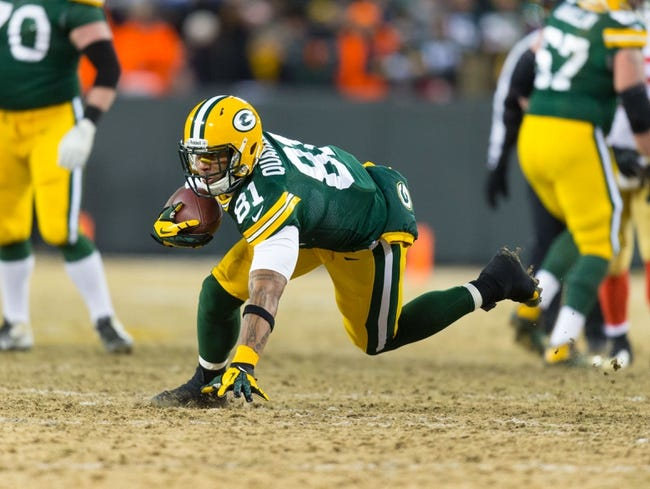 Jan 5, 2014; Green Bay, WI, USA; Green Bay Packers tight end Andrew Quarless (81) during the 2013 NFC wild card playoff football game against the San Francisco 49ers at Lambeau Field.  San Francisco won 23-20.  Mandatory Credit: Jeff Hanisch-USA TODAY Sports