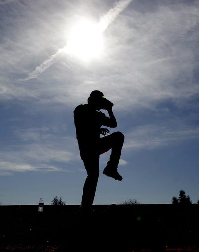 Feb 10, 2014; Glendale, AZ, USA; A Los Angeles Dodgers pitcher throws in the bullpen during camp at Camelback Ranch. Mandatory Credit: Rick Scuteri-USA TODAY Sports