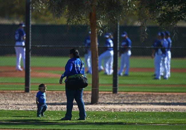 Feb 12, 2014; Glendale, AZ, USA; Los Angeles Dodgers fans watch team workouts at Camelback Ranch. Mandatory Credit: Mark J. Rebilas-USA TODAY Sports