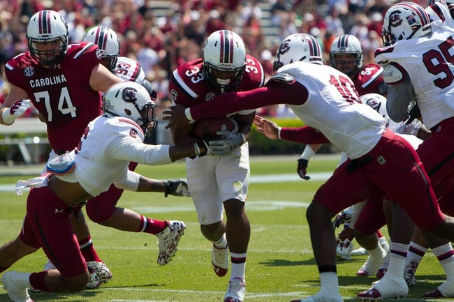 Apr 12, 2014; Columbia, SC, USA; South Carolina Gamecocks tail back David Williams (33) carries the ball during the first half of the South Carolina spring game at Williams-Brice Stadium. Mandatory Credit: Joshua S. Kelly-USA TODAY Sports