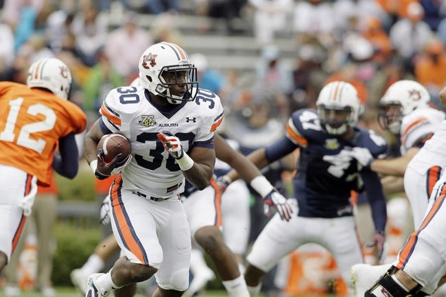 Apr 19, 2014; Auburn, AL, USA; Auburn Tigers running back Damian Lewis (30) carries during the second half of the A-Day spring game at Jordan Hare Stadium. Mandatory Credit: John Reed-USA TODAY Sports