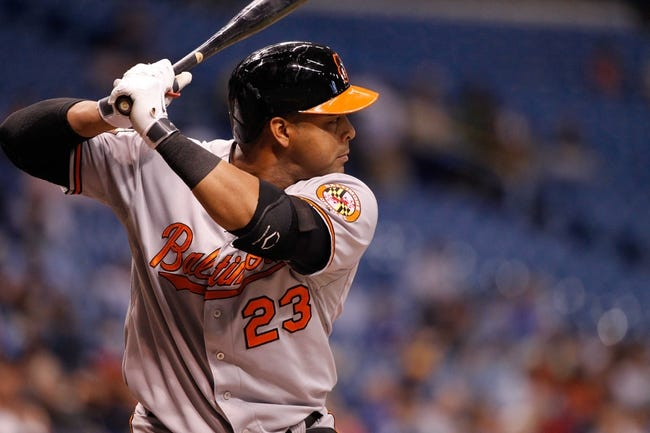 Jun 17, 2014; St. Petersburg, FL, USA; Baltimore Orioles left fielder Nelson Cruz (23) at bat against the Tampa Bay Rays at Tropicana Field. Mandatory Credit: Kim Klement-USA TODAY Sports