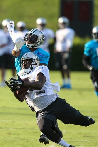 Jul 26, 2014; Spartanburg, SC, USA; Carolina Panthers wide receiver Marvin McNutt (15) and defensive back James Dockery (31) fight for the ball during training camp at Gibbs Stadium. Mandatory Credit: Jim Dedmon-USA TODAY Sports
