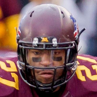 Nov 9, 2013; Minneapolis, MN, USA; Minnesota Gophers running back David Cobb (27) runs with the ball in the fourth quarter against the Penn State Nittany Lions at TCF Bank Stadium. Minnesota wins 24-10. Mandatory Credit: Brad Rempel-USA TODAY Sports