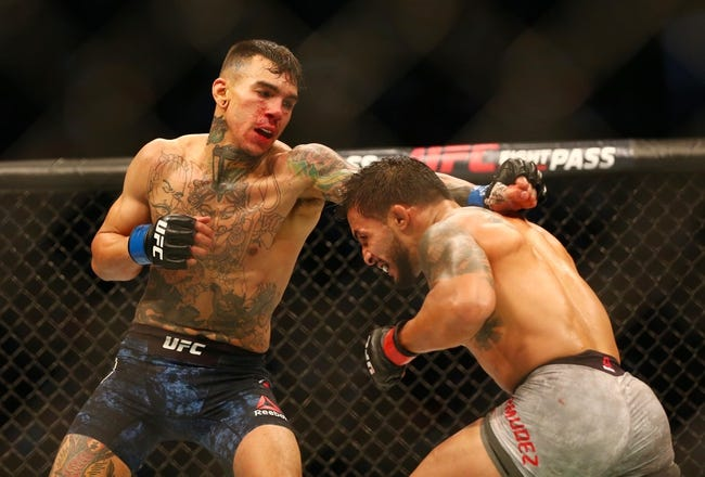 Michael Johnson vs. Andre Fili UFC Pick, Preview, Odds, Prediction - 8/25/18
