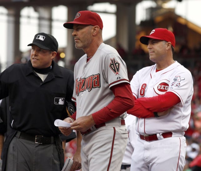 Cincinnati Reds vs. Arizona Diamondbacks MLB Pick, Odds, Prediction - 7/29/14