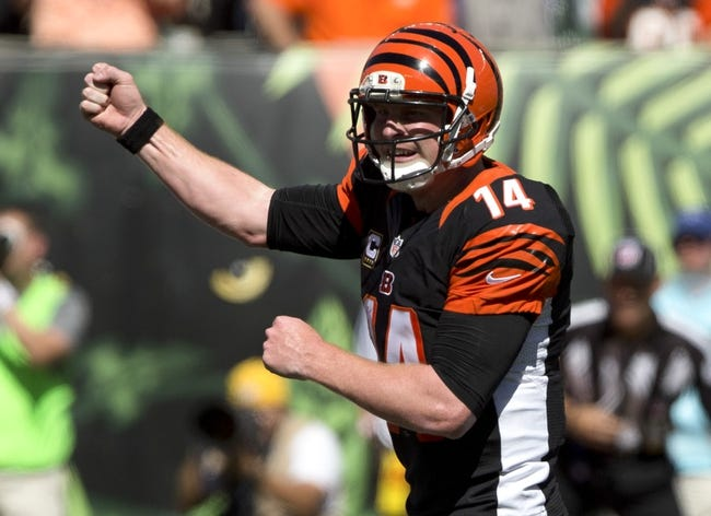 Cincinnati Bengals vs. Carolina Panthers 10/12/14 NFL Pick, Odds, and Prediction
