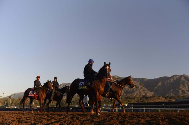 Horse Racing | Kevin gives his picks and Preview of the 2014 Breeder's Cup Mile