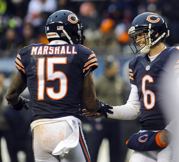 Bears vs. Buccaneers - 11/23/14 NFL Pick, Odds, and Prediction