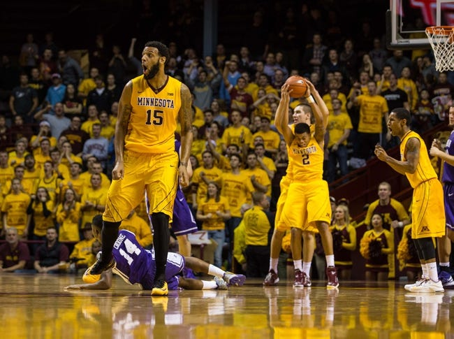 Michigan vs. Minnesota - 1/10/15 College Basketball Pick, Odds, and Prediction